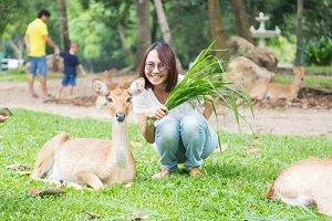 Woman give deer food