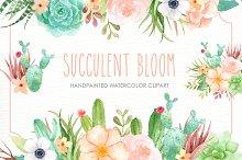 watercolor succulents