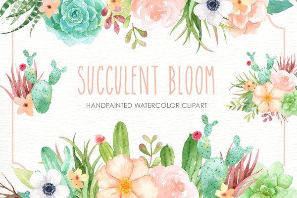 Succulent Bloom Watercolor Cliparts