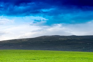 Norway summer meadow with hills landscape background