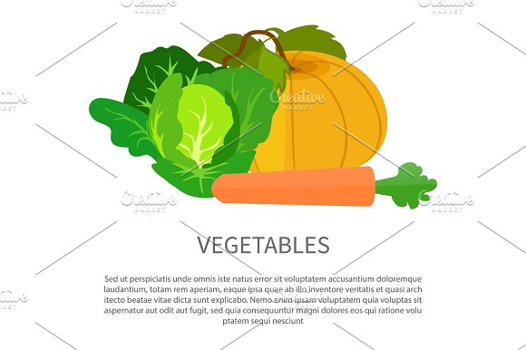 Vegetables Poster With Pumpkin Cabbage And Carrot