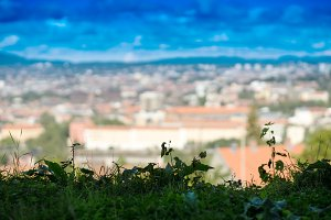 Horizontal green grass with Oslo city bokeh background