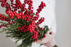 Woman hands holding winterberry