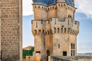 Olite Castle. Navarra.Spain.