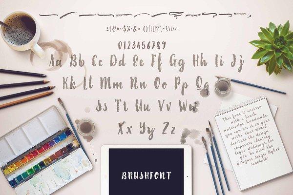 Best 60% discounBrush Font + 1 Serif Font Vector