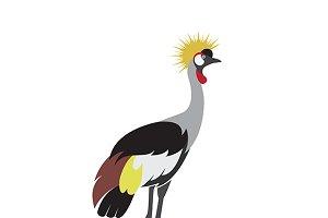 Vector of crowned crane bird design.