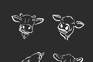 Vector group of a cow head. Animal.