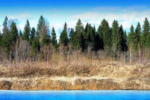 Horizontal spring forest river landscape background