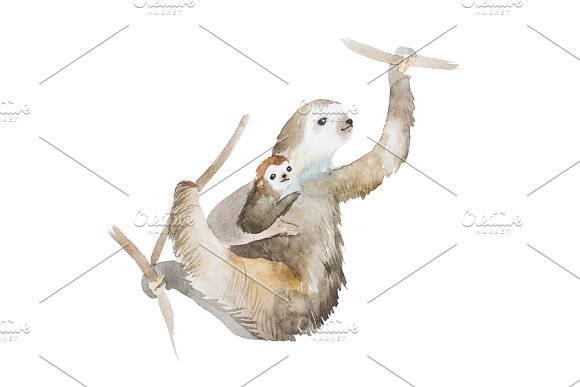Aquarelle Drawing Of Mother Sloth And A Baby Hanging On Tree Branches Hand Painted Illustration