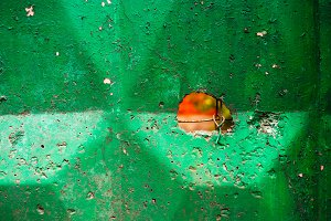 Green industrial fence with crack background