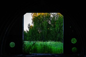 View on forest from military vault bokeh background