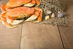 Dungeness crabs with net