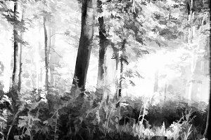 Horizontal black and white forest illustration background