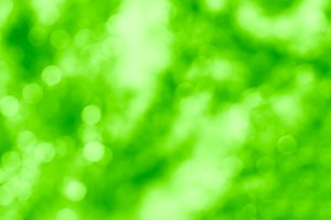 Horizontal summer green bokeh background
