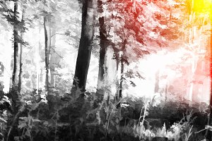 Forest illustration with light leak background