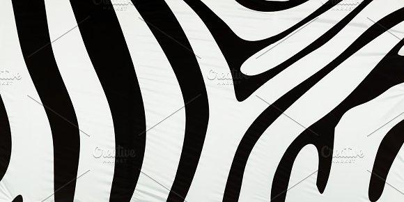 Horizontal Black And White Zebra Texture Background