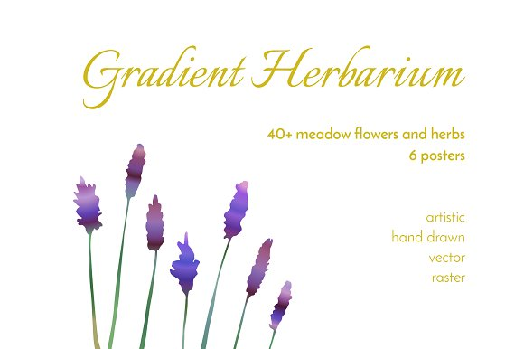 Meadow Gradient Herbarium-Graphicriver中文最全的素材分享平台