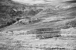Norway fence in mountains landscape background