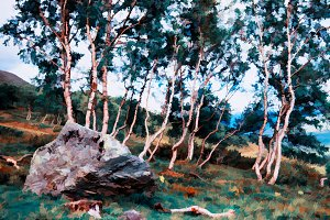 Stone in mountain forest illustration background