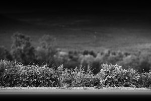 Black and white mountain road with grass border background