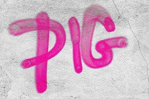 Pig word written