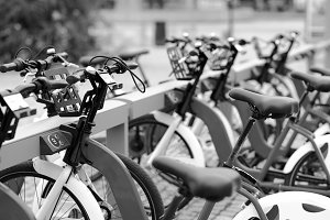 Black and white Norway bicycle public yard background