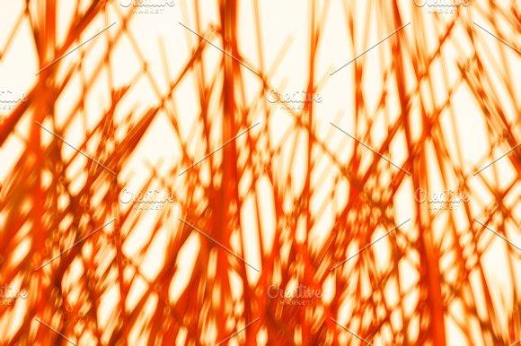 Orange Lines Bokeh Background