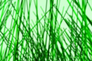 Green lines bokeh background