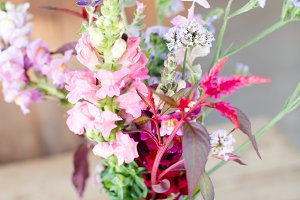 Farm flowers in a vase