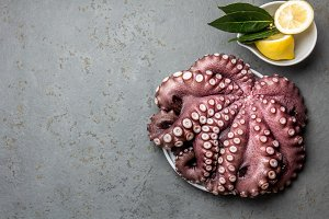 Seafood octopus. Whole fresh raw octopus with lemon and laurel, gray slate background, top view