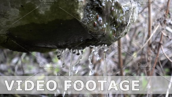 Natural Spring Drops Fall In Slow Motion