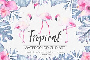 Tropical watercolor clip art