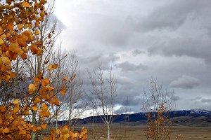 Late Fall in Wyoming