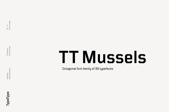 TT Mussels