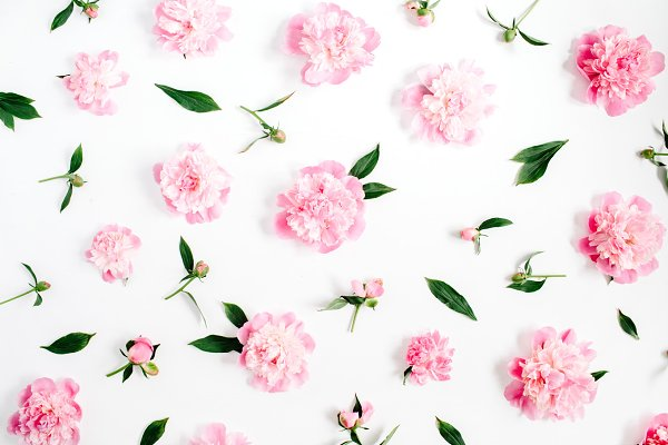 Abstract Stock Photos: Floral Deco - Peonies pattern