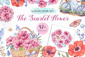 SALE! The Scarlet Flower