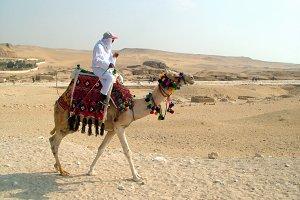 Camel Riding in Desert