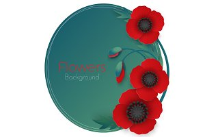 Flowers background with full blown and still blooming red poppies