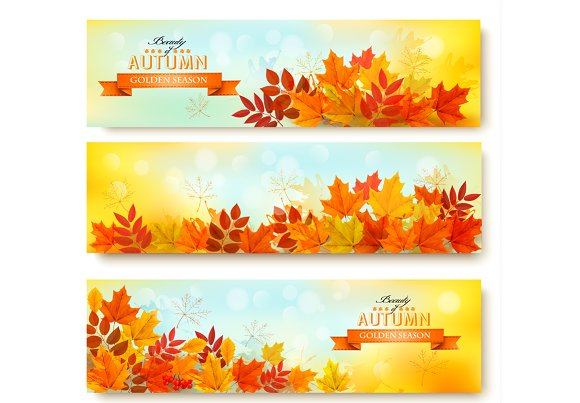 Set Of Three Nature Banners