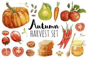 Autumn Harvest Set