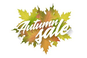 Autumn sale. Vector design element on white background.