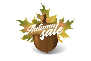 Autumn sale. Vector design concept with acorn and leaves on white background.