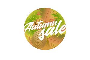 Autumn sale design concept with leaves and text title. Can be used for advertising and promotion,