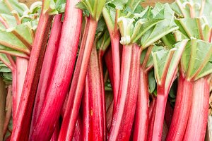 Red rhubarb stalks at the market