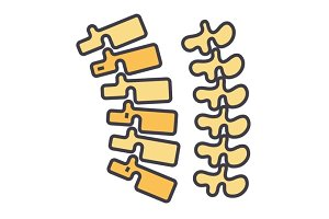 Backbone, spine, chiropractic, backache, bone concept. Line vector icon. Editable stroke. Flat linear illustration isolated on white background
