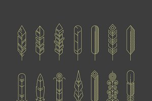 Linear feathers vector icons