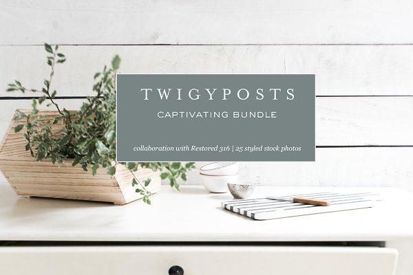 Website Templates: TwigyPosts - Stock Photos | Restored 316 Demo