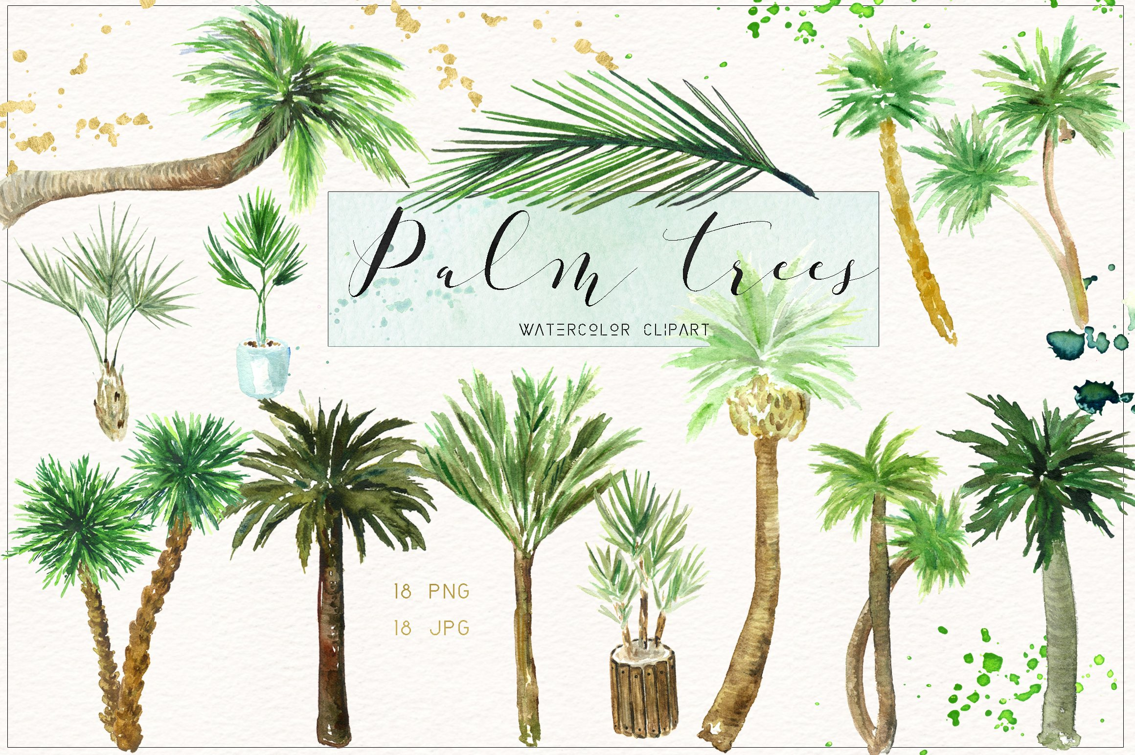 Palm tree. Watercolor clipart. ~ Illustrations ~ Creative Market