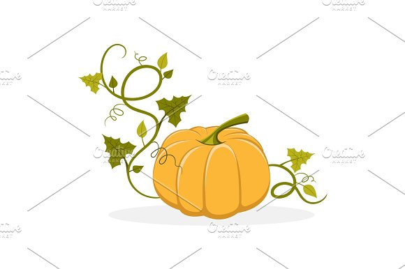 Ripe Pumpkin With Swirly Leafy Stem Illustration