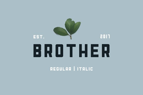 Brother Display Font